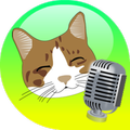 translator talking cat