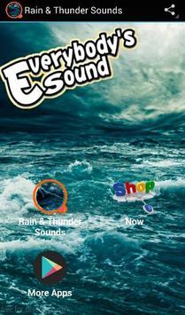Rain & Thunder Sounds poster