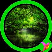 Rainforest Sounds icon