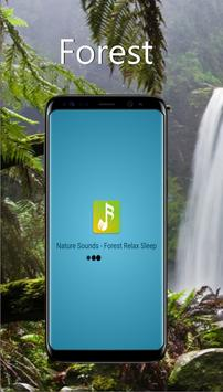 Nature Sounds - Forest Relax Sleep poster