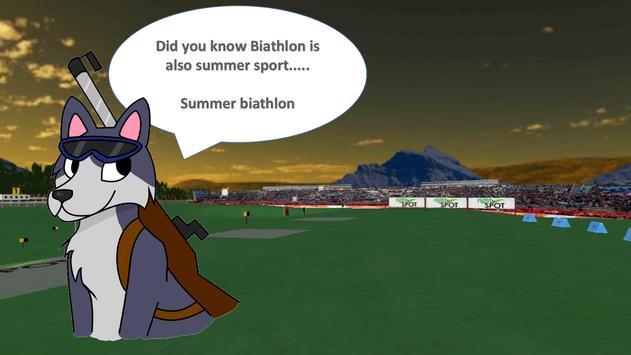 Biathlon x1 poster