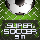Super Soccer Sim icon