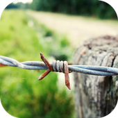 Barbed Wire Wallpaper icon