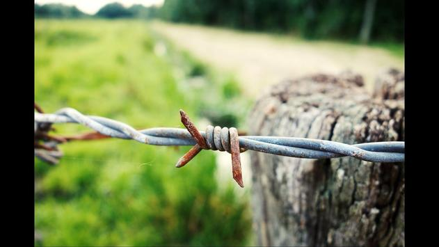 Barbed Wire Wallpaper poster