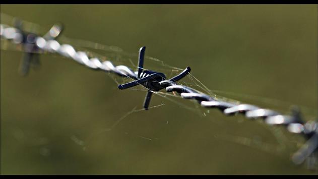Barbed Wire Wallpaper screenshot 1