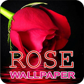 Rose Wallpaper icon