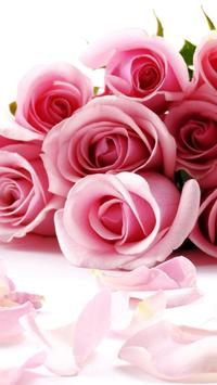 Roses Live Wallpaper screenshot 1