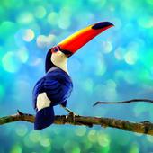 Toucan Bird Live Wallpapers icon