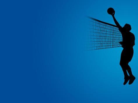 Volleyball Live Wallpapers screenshot 2