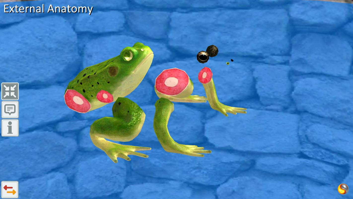 Frog Anatomy & Life Cycle APK Download - Free Education APP for ...