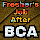 Freshers Job After BCA icon