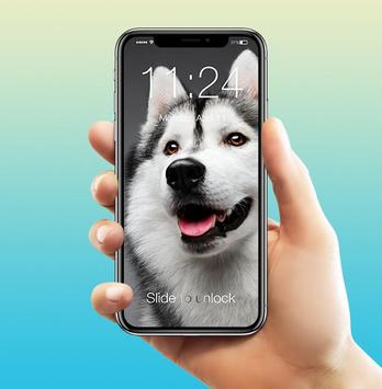 Husky Adorable Pet Siberian Dog App Lock screenshot 2