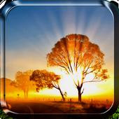 Sunrise Live Wallpaper icon