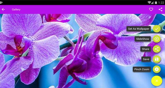 Super Flowers Wallpaper apk screenshot