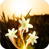 Flower mystery. Live wallpaper icon