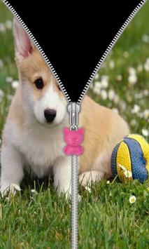 Cute Puppy Zip Screen Lock screenshot 8