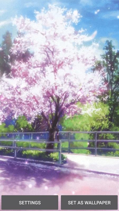 Wallpaper Bunga Sakura For Android Apk Download