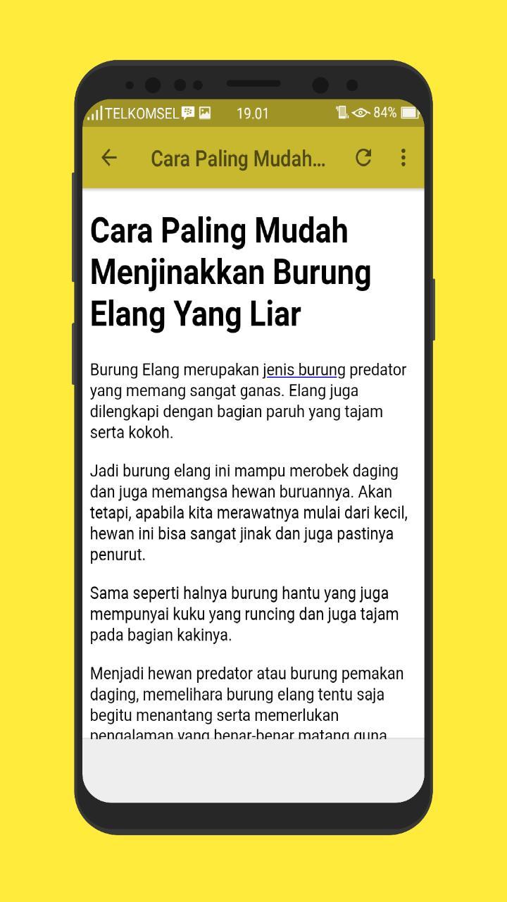 Kicau Burung Elang Gacor Mp3 For Android Apk Download