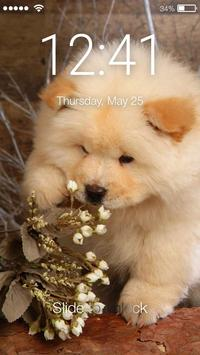 Cute Puppies Chow Chow Dog Screen Lock poster