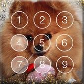 Pomeranian Spitz Cute Dog Screen Lock icon