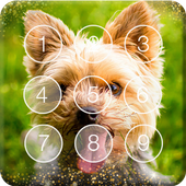 Yorkshire Puppies Lovely Smart Little Screen Lock icon