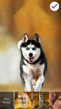 Husky HD Free PIN Lock Security poster