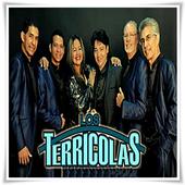 Los Terricolas - Te Juro Que Te Amo icon