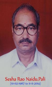 Pali Sesha Rao Naidu poster