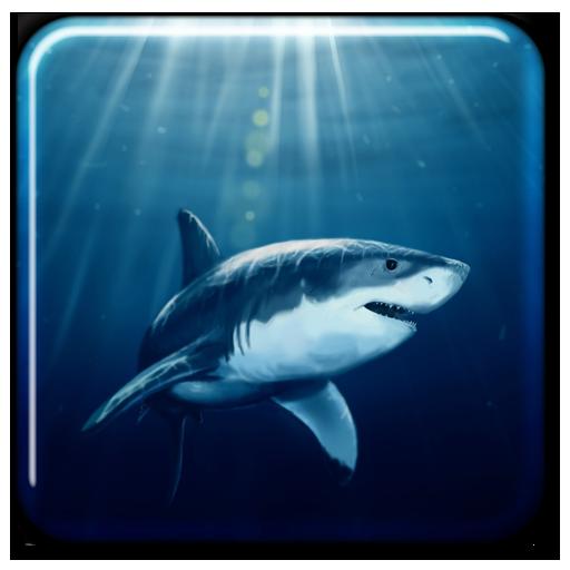 Hai Live-Hintergründe