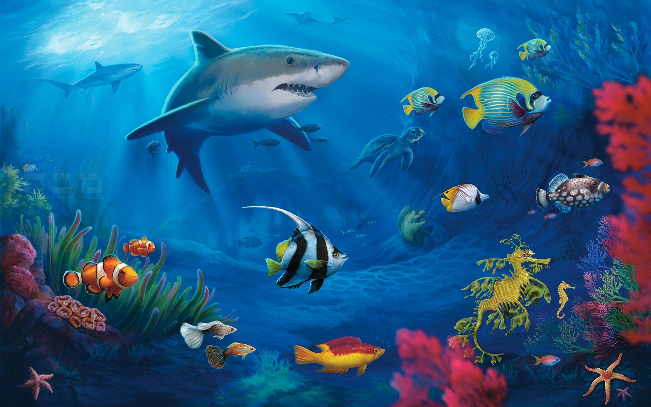 Shark Live Wallpaper For Android Apk Download