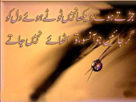 Short Urdu Poet Designs apk screenshot