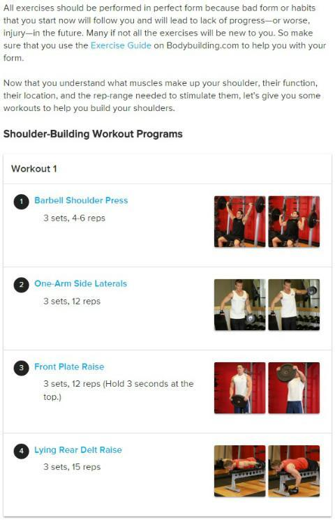 Shoulder Workouts For Mass for Android - APK Download