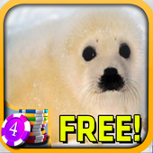 3D Baby Seal Slots - Free icon
