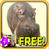 3D Hippo Slots - Free icon