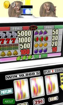 3D Hippo Slots - Free apk screenshot