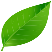Leaf and Pebble icon