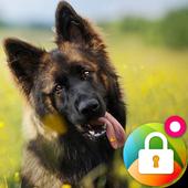German Shepherd Dog Pattern Lock Screen icon