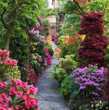 Simple Home Garden Ideas apk screenshot