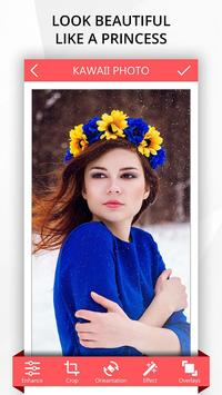 Kawaii Photo poster