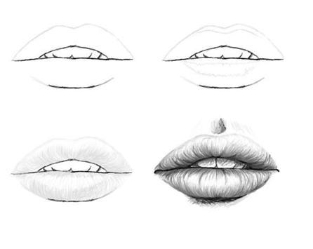 Sketch Drawing Tutorials screenshot 3