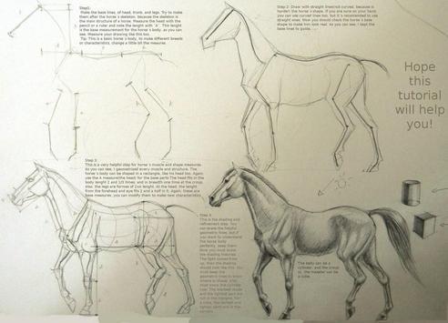 Sketch Drawing Tutorials screenshot 6