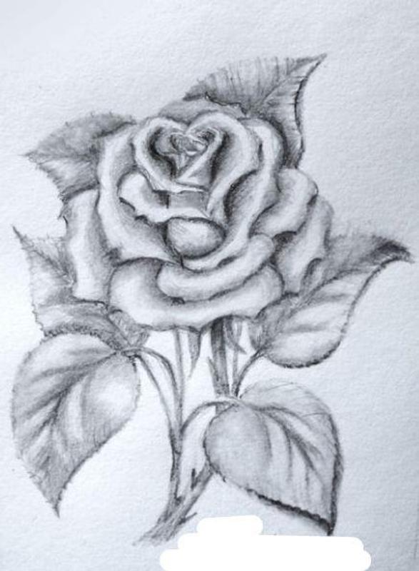 Sketch pencil drawing apk screenshot