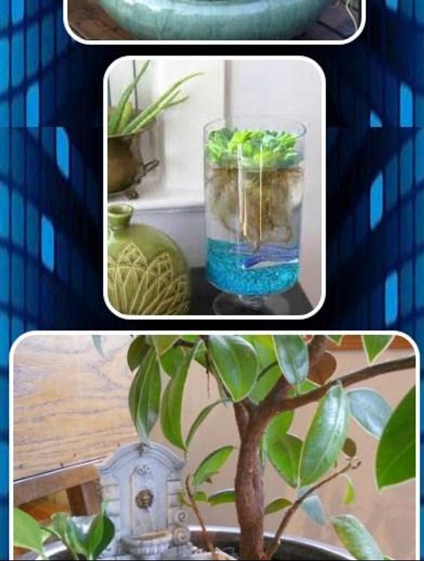 Pequeños jardines interiores de agua Descarga APK - Gratis Estilo de ...