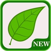 New Guide Snapseed 2018 icon