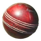 Blind Cricket icon