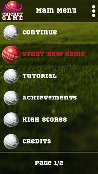 Blind Cricket poster