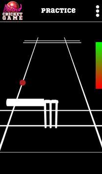 Blind Cricket screenshot 13