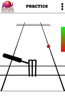 Blind Cricket screenshot 8