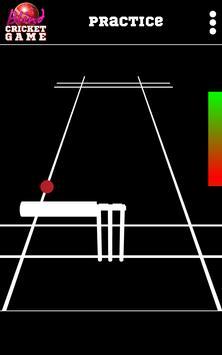 Blind Cricket screenshot 9