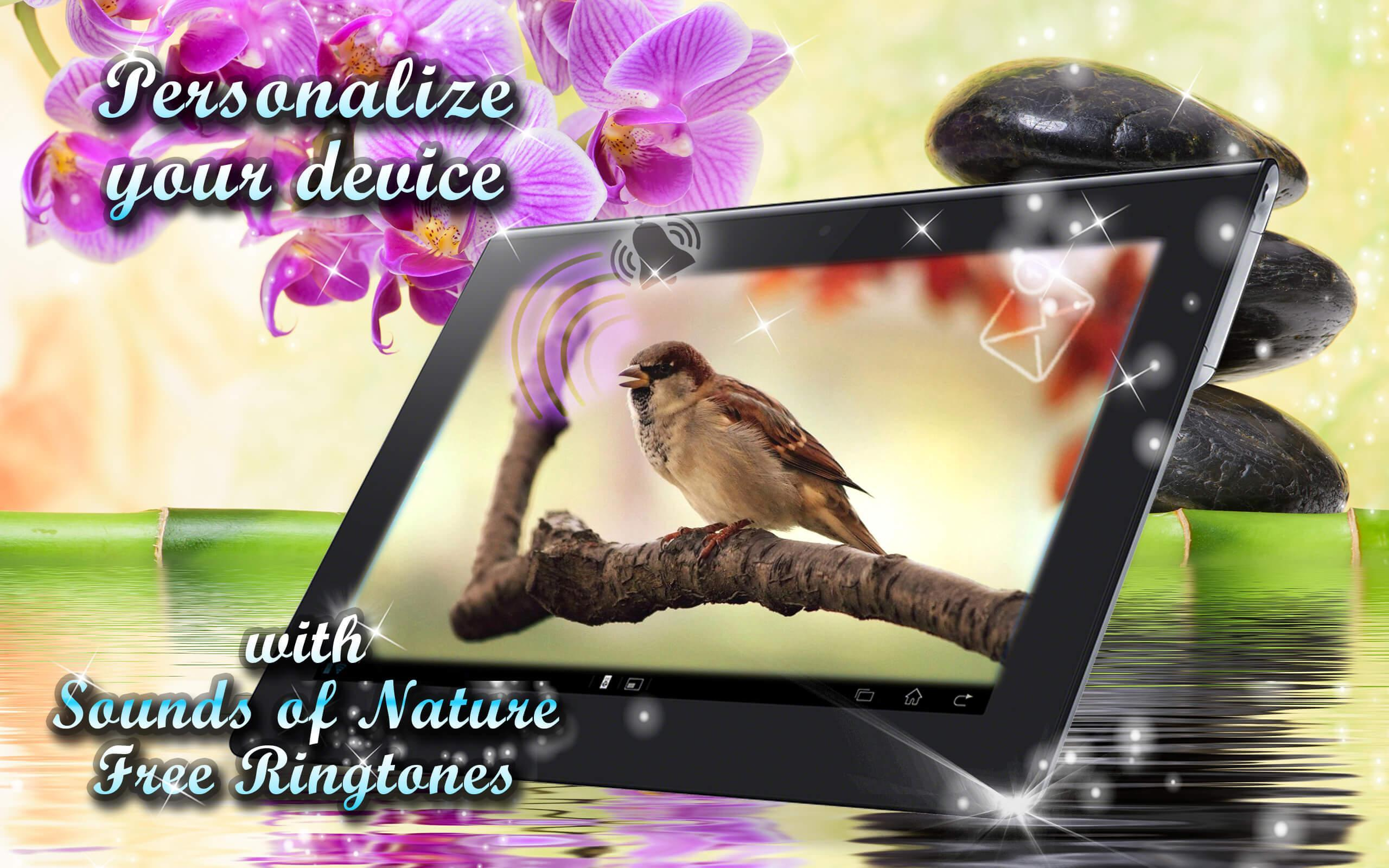 Sounds of Nature Ringtones Free 🌴 Beautiful Tunes for